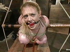 tied blonde and her dildo filled cunt